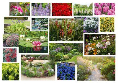 Garden Design Cambridge 14